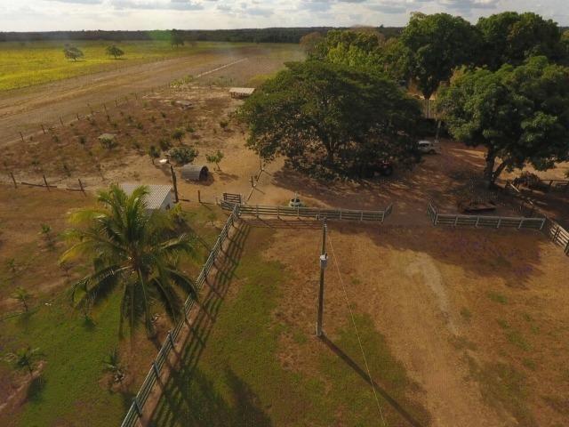 935 há (193 alq) Pecuária e Grãos com ótima sede e benfeitorias e pista de pouso de 1.300m - Foto 7
