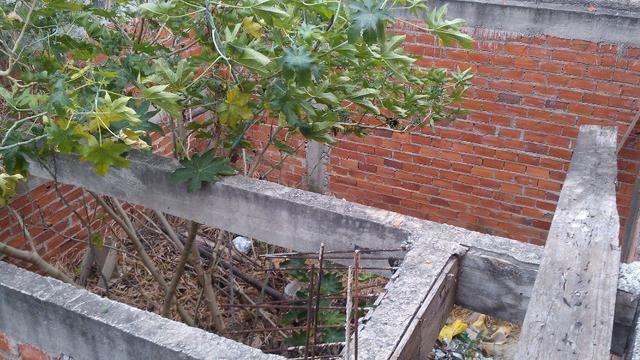 Terreno Vila Amato com construção - Foto 6