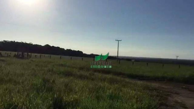 Fazenda rural à venda, belmonite, belmonte. - Foto 3