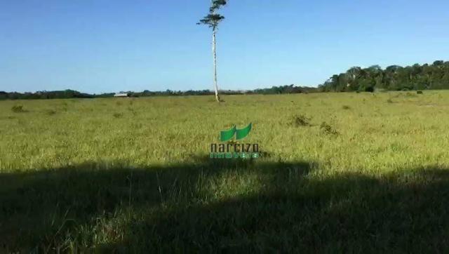 Fazenda rural à venda, belmonite, belmonte. - Foto 10