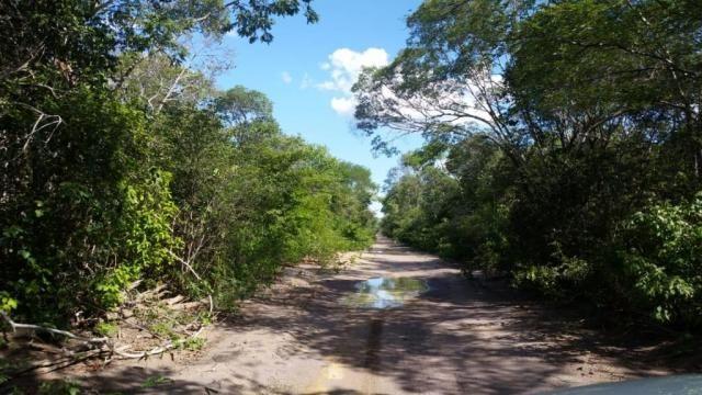 Fazenda à venda, 150000000 m² por R$ 55.809.000,00 - Zona Rural - Pilão Arcado/BA - Foto 13