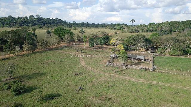 Fazenda com Curral e Pasto - Prox. Rio Preto - Foto 4