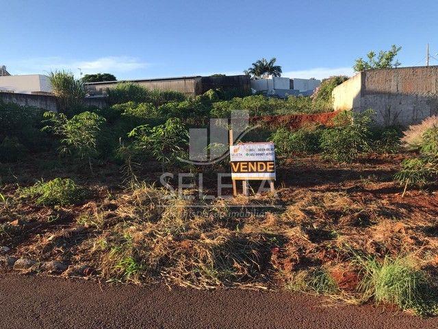 Terreno à venda, Loteamento Berté, 392 metros quadrados, CORBELIA - PR - Foto 5