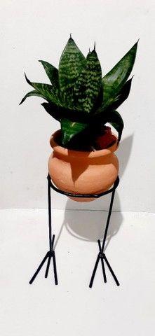 Surpreenda a pessoa que vc ama com esses lindos vasos - Foto 3