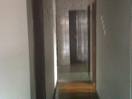 Casa à venda com 3 dormitórios em Flávio marques lisboa, Belo horizonte cod:169 - Foto 7