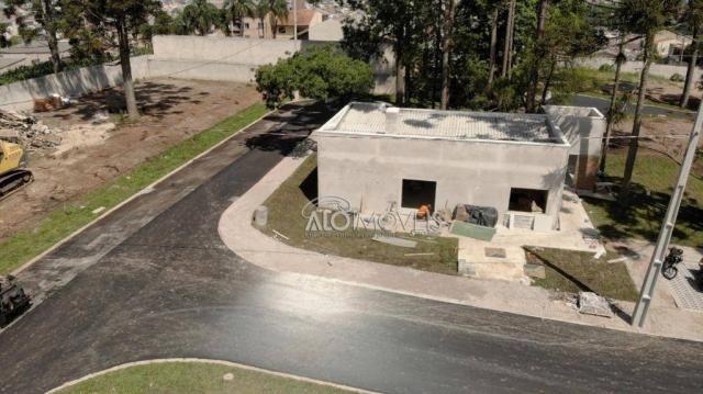 Terreno à venda, 123 m² por r$ 173.558,11 - pinheirinho - curitiba/pr