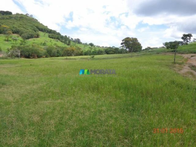 Fazenda à venda - 1.180 hectares - região jequitibá (mg) - Foto 6