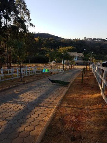 Fazenda / haras / pecuária leiteira - 20 hectares - piedade dos gerais (mg) - Foto 11