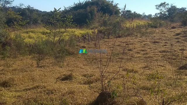 Fazenda à venda - 40 hectares - lavras (mg) - Foto 3