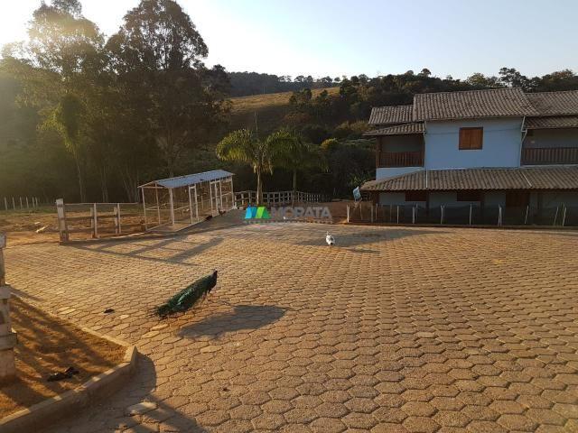Fazenda / haras / pecuária leiteira - 20 hectares - piedade dos gerais (mg) - Foto 5