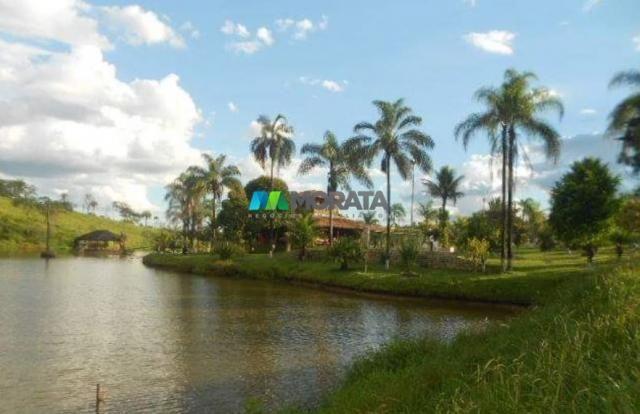 Fazenda / haras à venda - 16 hectares - brumadinho (mg) - Foto 10