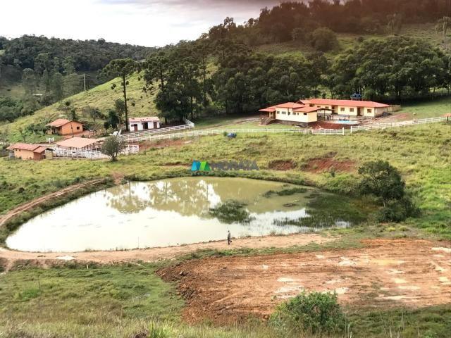 Fazenda à venda - 40 hectares - região santana dos montes (mg) - Foto 13