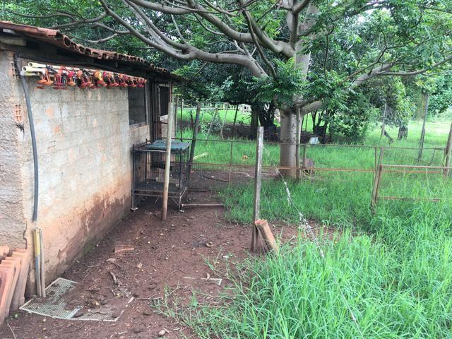Chácara em Bela Vista de Goiás com casa - Foto 7