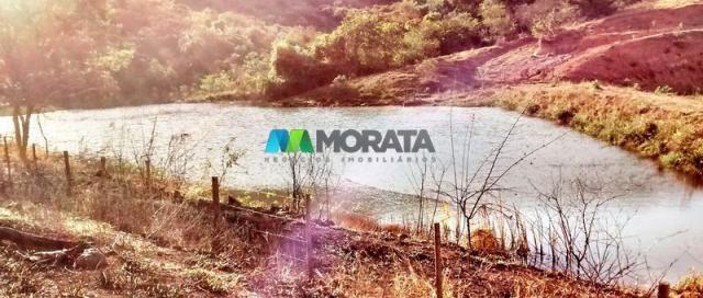 FAZENDA - 334 hectares - PARÁ DE MINAS (MG) - Foto 5