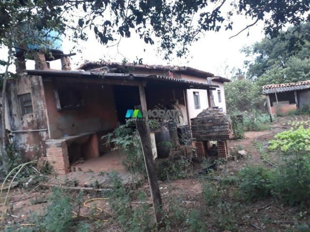 Fazendinha - 08 hectares - paraopeba (mg) - Foto 6