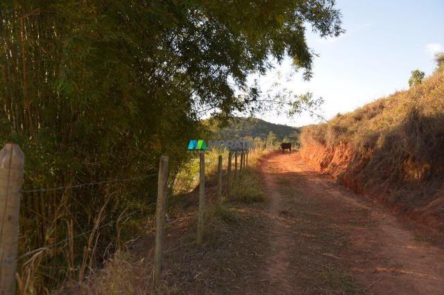 Fazenda à venda - 40 hectares - região santana dos montes (mg) - Foto 6