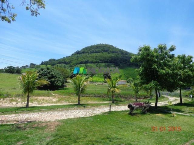 Fazenda haras – 990 hectares - sete lagoas (mg) - Foto 4