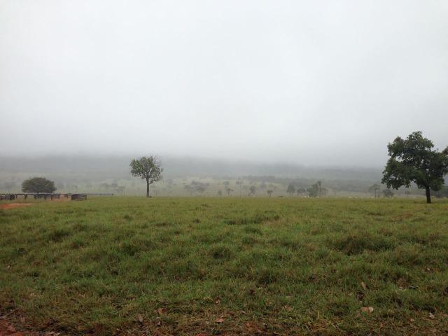 Fazenda - 1100 Hectares - Cáceres/MT - Foto 6