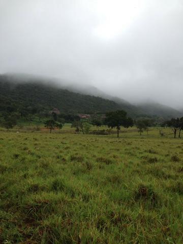 Fazenda - 1100 Hectares - Cáceres/MT - Foto 10