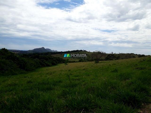 Fazenda à venda - 90 hectares - lavras (mg) - Foto 5