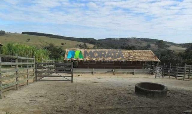 Fazenda pecuária - 220 hectares - belo vale (mg) - Foto 13