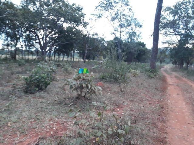 Fazendinha - 08 hectares - paraopeba (mg) - Foto 11
