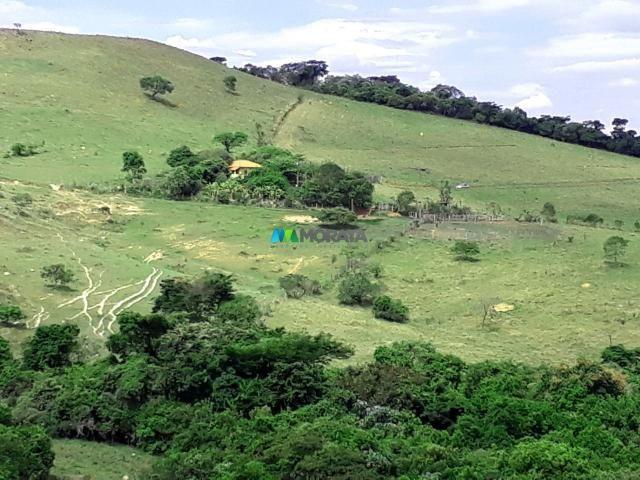 Fazenda à venda - 90 hectares - lavras (mg) - Foto 2