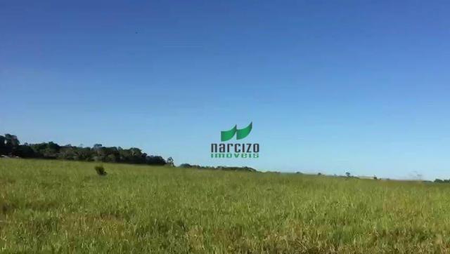 Fazenda rural à venda, belmonite, belmonte. - Foto 12