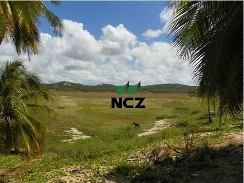 Fazenda à venda, 380000 m² por r$ 3.040.000 - litoral norte - jandaíra/ba - Foto 2