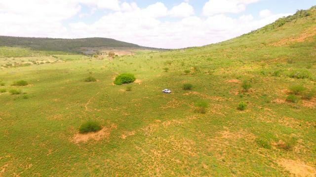 Fazenda Jaguaquara - Foto 18