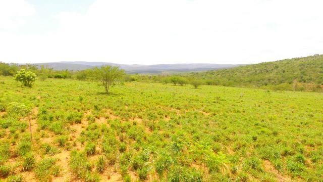 Fazenda Jaguaquara - Foto 9