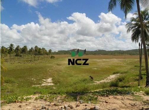 Fazenda à venda, 380000 m² por r$ 3.040.000 - litoral norte - jandaíra/ba - Foto 7