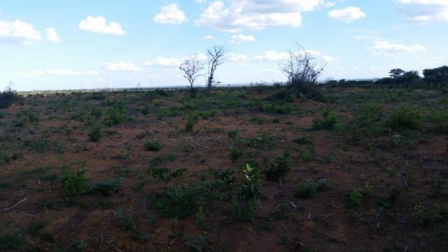 Fazenda à venda, 150000000 m² por R$ 55.809.000,00 - Zona Rural - Pilão Arcado/BA - Foto 12