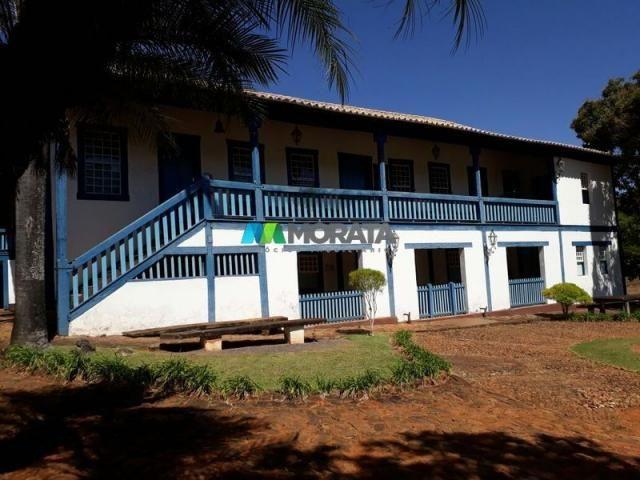 Fazenda à venda - 401 hectares - paraopeba (mg)