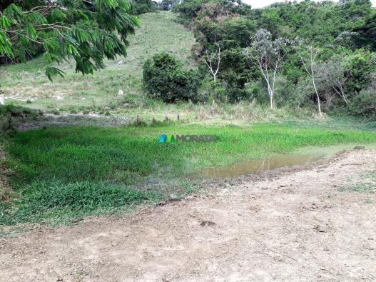 Fazenda à venda - 90 hectares - lavras (mg) - Foto 17