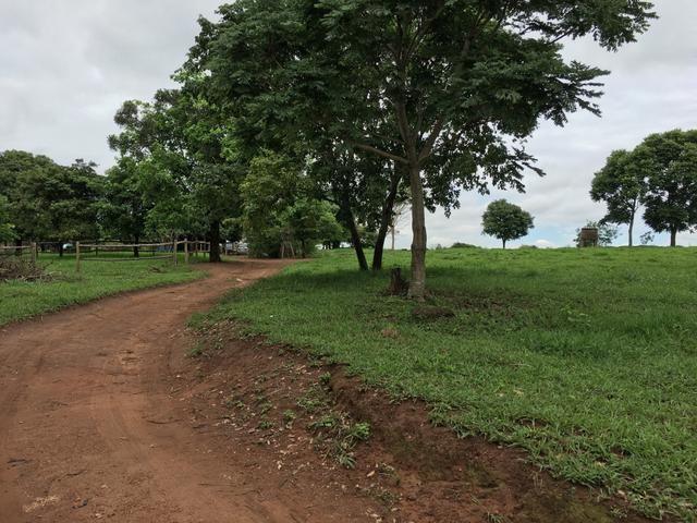 Chácara em Bela Vista de Goiás com casa - Foto 14