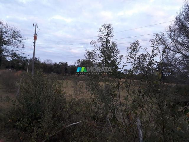 Fazendinha - 08 hectares - paraopeba (mg) - Foto 12