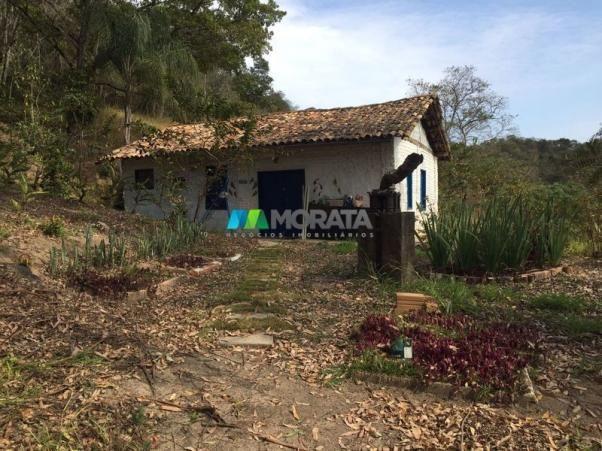 Fazenda à venda - 97 hectares - itabirito (mg) - Foto 7