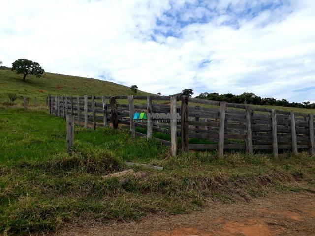 Fazenda à venda - 90 hectares - lavras (mg) - Foto 12