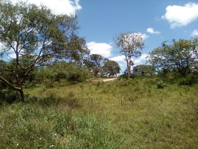 Vendo ou troco terreno / sítio em Alagoinhas Bahia - Foto 6
