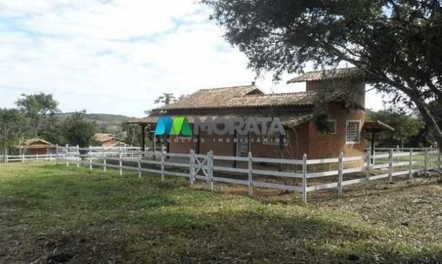 Fazenda pecuária - 220 hectares - belo vale (mg) - Foto 8