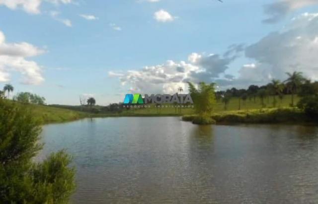 Fazenda / haras à venda - 16 hectares - brumadinho (mg) - Foto 13