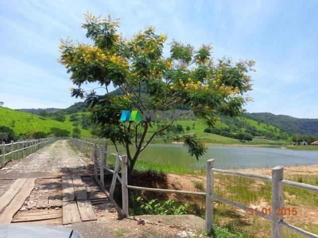 Fazenda à venda - 1.180 hectares - região jequitibá (mg) - Foto 4