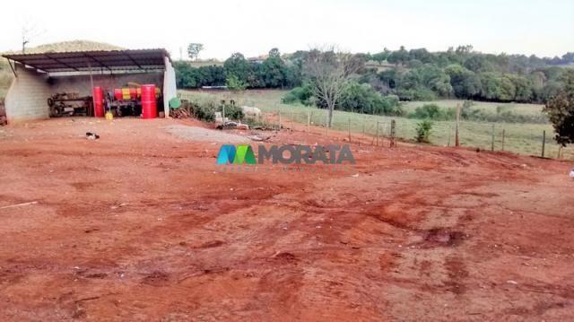 Fazenda à venda - 75 hectares - onça do pitangui (mg) - Foto 8