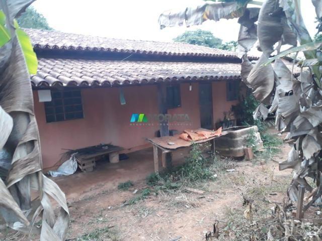 Fazendinha - 08 hectares - paraopeba (mg) - Foto 4