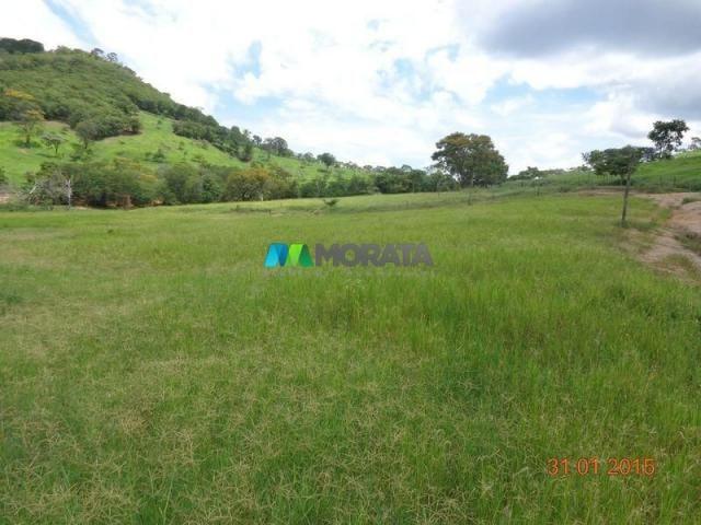 Fazenda à venda - 1.180 hectares - região jequitibá (mg)
