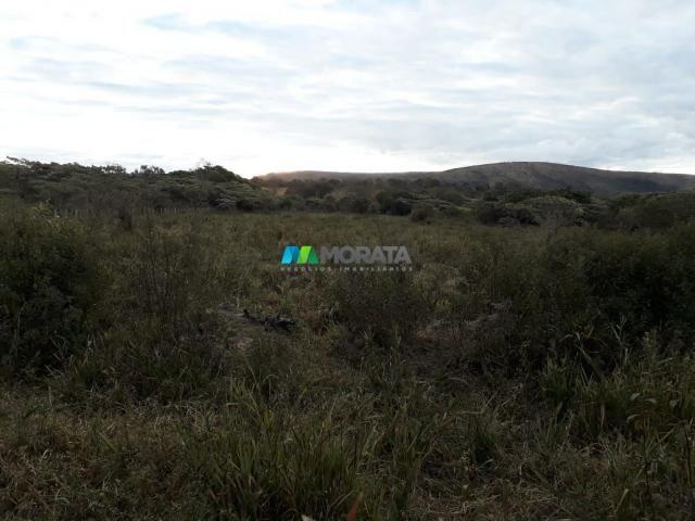 Fazendinha - 08 hectares - paraopeba (mg) - Foto 17