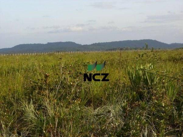 Fazenda à venda, 4080000 m² por r$ 5.000.000 - barra grande - maraú/ba - Foto 5