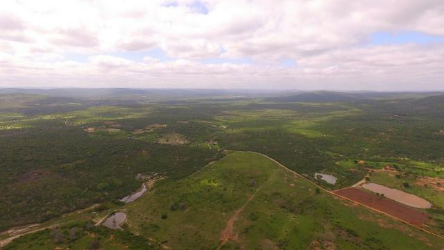 Fazenda Jaguaquara - Foto 2