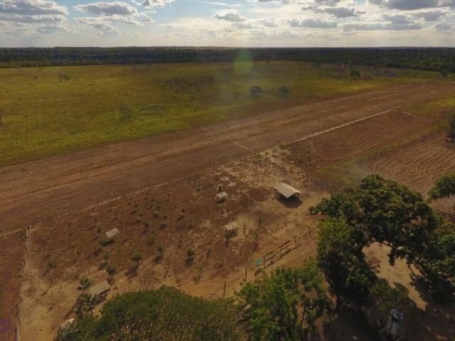 935 há (193 alq) Pecuária e Grãos com ótima sede e benfeitorias e pista de pouso de 1.300m - Foto 9